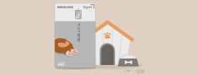 카드의정석 댕댕냥이 출시기념 이벤트